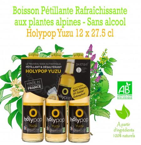 HOLYPOP YUZU X12