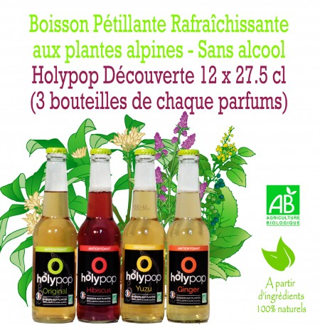 HOLYPOP DECOUVERTE X12