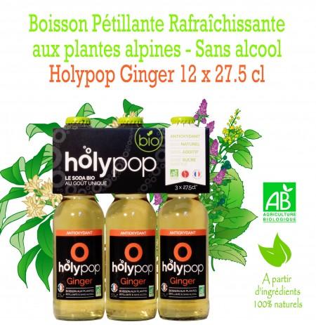 HOLYPOP GINGER X12
