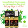 Holypop Ginger Bio 12 bouteilles X 27.5 cl