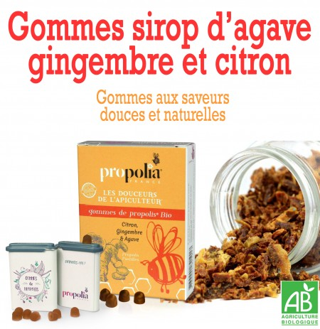 GOMMES SIROP AGAVE GINGEMBRE CITRON