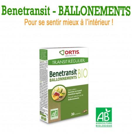BENETRANSIT BALLONNEMENT