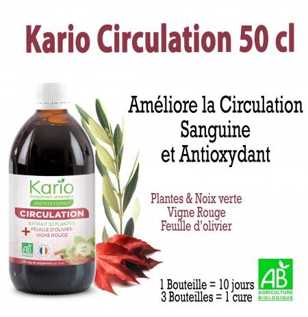 KARIO CIRCULATION