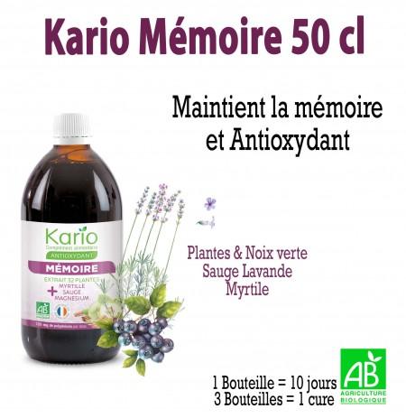 KARIO MEMOIRE