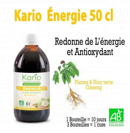 KARIO ENERGIE